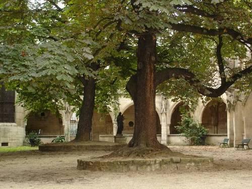 Jardin du Cloître Saint-Séverin. Ảnh: Flickr