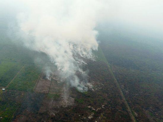 Than bùn đang cháy trong vùng Palangkaraya