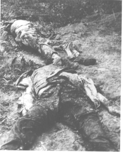On April 5, a Vietnamese farmer near Hue discovered a grave containing the bodies of four Germans killed by the Viet Cong and North Vietnamese during their TET attacks on the old imperials capital of Hue. The bodies of three German professors at the Faculty of Medicine at Hue, and the wife of one of the professors, were found with their hands tied behind their backs, and indication that they had been executed shortly after their capture. The Viet Cong victims were: Dr. Horst Krainick and Mrs. Krainick; Dr Baisund Disher, and Dr. Alois Altekoester. -- Mrs. Elizabeth Krainick (foreground) and Dr. Alois Altekoester (background) -- 68-0192-B