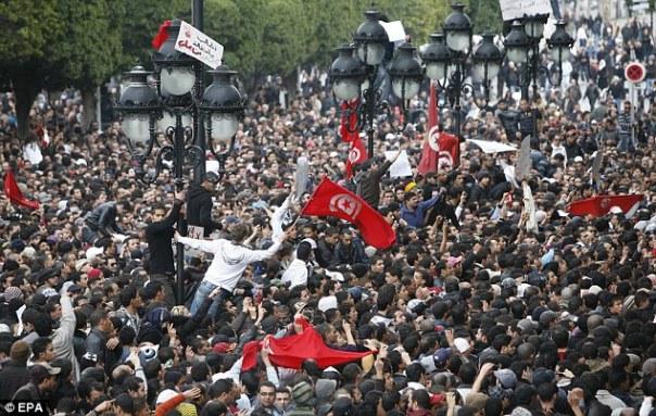 Biểu tình ở Tunis ngày 8 tháng 1 năm 2011