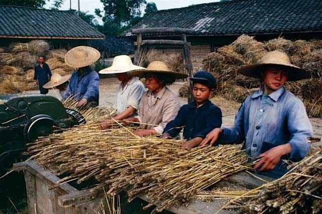 Nông dân ở Thành Đô, Trung Quốc trong những năm 1980