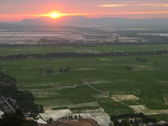 Đồng ruộng ở Châu Đốc. Hình: Wikipedia