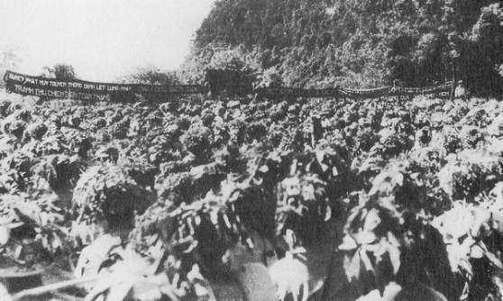 Năm 1953, Việt Nam và Pháp mỗi bên có tròn 350.000 người lính chiến đấu chống lại nhau. Trong hình là một đơn vị của VNDCCH sắp ra mặt trận.