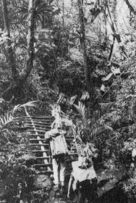 Quân đội Bắc Việt đã tham chiến ngay từ tháng Chín 1964. Vũ khí và quân lính được lén lút mang vào miền Nam qua con đường mòn Hồ Chí Minh.