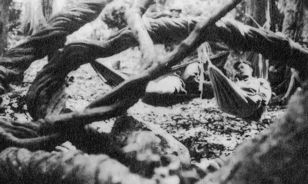 Việt Cộng nghỉ ngơi trong rừng rậm.