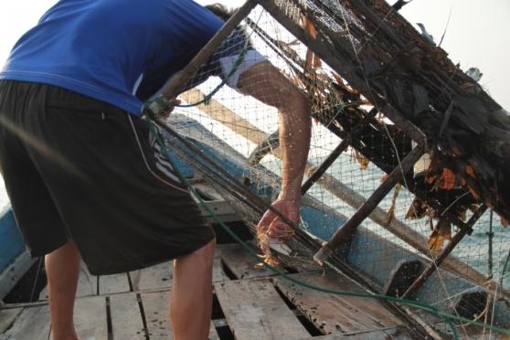 Ngư dân kéo 20 chiếc bẫy trên biển, nhưng chỉ được một con ghẹ... sắp chết.